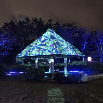新潟_光の公園2019